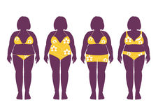 Collection of silhouettes of fat woman in bathing suits ,Vector illustrations Royalty Free Stock Image
