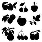 A collection of silhouettes of fruit Royalty Free Stock Image