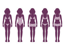 Collection of silhouettes of girls in bathing suits ,Vector illustrations Stock Image