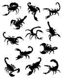 A collection of silhouettes of scorpions Royalty Free Stock Images