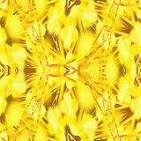 Collection simple de kaléidoscope de batik Images libres de droits
