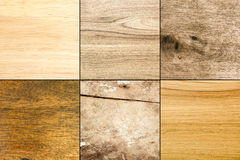 Collection of six plain wood texture background Royalty Free Stock Photo