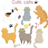 Collection of sketched cats for design Royalty Free Stock Images