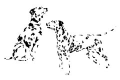 A collection of sketches breed dogs. Isolated hand drawings. Animal concept. A set of drawings of adult dog Dalmatian. Pattern of spots and dots. Hand drawing Royalty Free Stock Photography