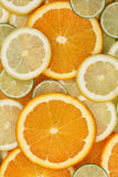 Collection of sliced orange, lemon and limes background Royalty Free Stock Photos