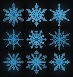 Collection of the snowflakes. Collection of the blue snowflakes royalty free illustration
