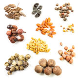Collection of spice Stock Image
