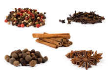 Collection of spices Royalty Free Stock Photos
