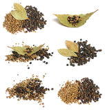 Collection of spices Stock Images