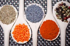 Collection of spices for healthy cooking Stock Photography