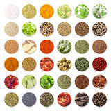 Collection of spices and herbs. Isolated on white background royalty free stock images