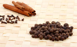 Collection of spices on a table mat Royalty Free Stock Photos