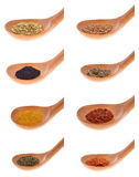 Collection  spices Stock Photo