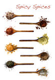 Collection of Spices in Wooden Spoons. Collection of Various Spices in Wooden Spoons: Salt with Chili, Salt with Cayenne Pepper, Dried Paprika, Cumin Powder royalty free stock image