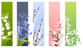 Collection of spring flowers Royalty Free Stock Photos