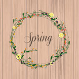 Collection of spring flowers, leaves, dandelion, grass. Royalty Free Stock Photo