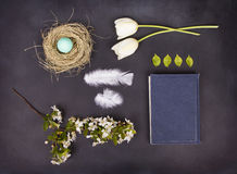 A collection of spring items Stock Photography