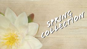 Collection spring summer stock images