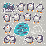 Collection of stickers with cute cartoon funny penguins Royalty Free Stock Photo