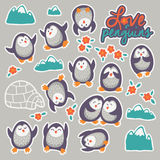 Collection of stickers with cute cartoon funny penguins Stock Images