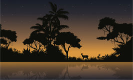 Collection stock of jungle landscape silhouette Stock Photos
