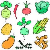 Collection stock of vegetable set cartoon Stock Photos