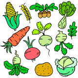 Collection stock of vegetable various doodle set Stock Images