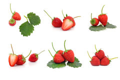 Collection strawberries fruit isolated on white background Royalty Free Stock Photo