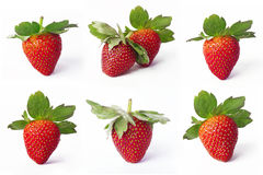 Collection of Strawberries Stock Photos