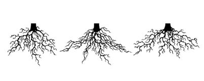 Free Collection Strong Plant Roots Silhouette. Abstract Felled Tree With Root. Tree With Lush Root Royalty Free Stock Photography - 183505817