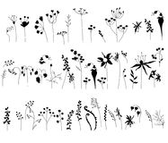 Collection with stylized forest flowers and herbs isolated on white. Black and white. Royalty Free Stock Photos