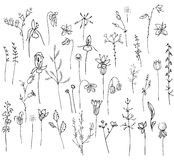 Collection with stylized forest flowers and herbs isolated on white. Black and white silhouette. Royalty Free Stock Image