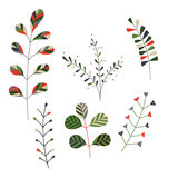 Collection of stylized plants. Set of minimalistic, stylized plants in shades of green, grey and red Royalty Free Stock Images