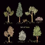 Collection of stylized trees Stock Image