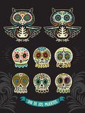 Collection of sugar skull cats in mexican style Stock Images