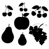 Collection of summer fruits, silhouette on white background. Stock Photo