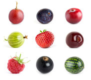 Collection of sweet berries Royalty Free Stock Photo