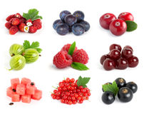 Collection of sweet berries Stock Photo