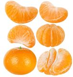 Collection of tangerine mandarin. Slices and cut of citrus fruit isolated on white background. Tangerine, mandarin, clementine. Fresh citrus fruits isolated on stock photo