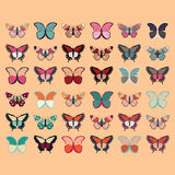 Collection of thirty six colorful hand drawn butterflies, orange background Royalty Free Stock Photography