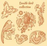 Collection tirée par la main d'oiseau illustration stock