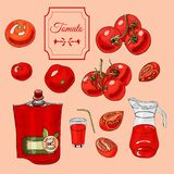 Collection of tomatoes and other hand drawn objects. Ink and colored sketchon light red background. Collection of tomatoes and different hand drawn objects. Ink vector illustration