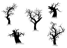 Collection of tree. Halloween evil vector illustration of collection of tree Stock Images