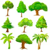 Collection of Tree Royalty Free Stock Images