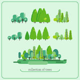 Collection of trees, floral group, nature collection Royalty Free Stock Photos