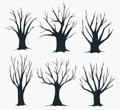 Collection of trees silhouettes Stock Photo