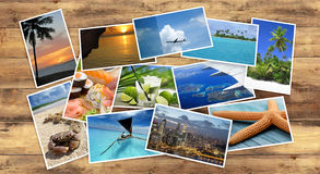 Collection of tropical images Royalty Free Stock Photography