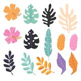 Collection of  tropical jungle leaves. Vector collection of  tropical jungle leaves in trendy geometric style.  All objects are conveniently grouped and easily Royalty Free Stock Photos