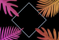 Collection of tropical leaves,foliage plant in gradient color on black background.Abstract leaf decoration design. Exotic nature for cover template stock photography