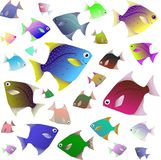 Collection tropicale de poissons d'isolement sur le fond blanc illustration stock